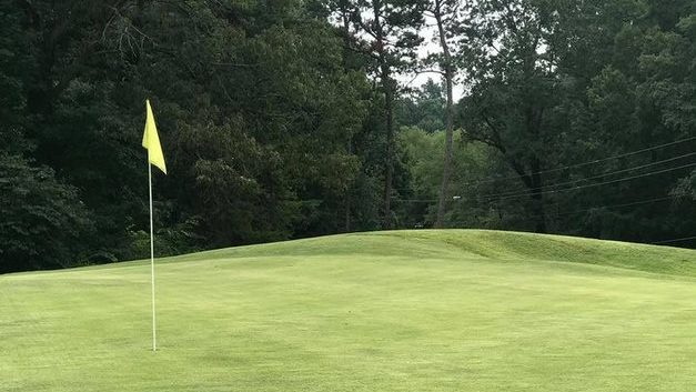 green at Heather Hills Golf Course